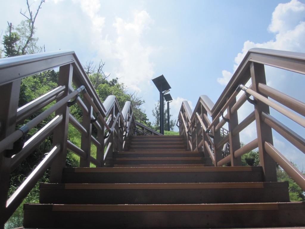 階段を登る様子