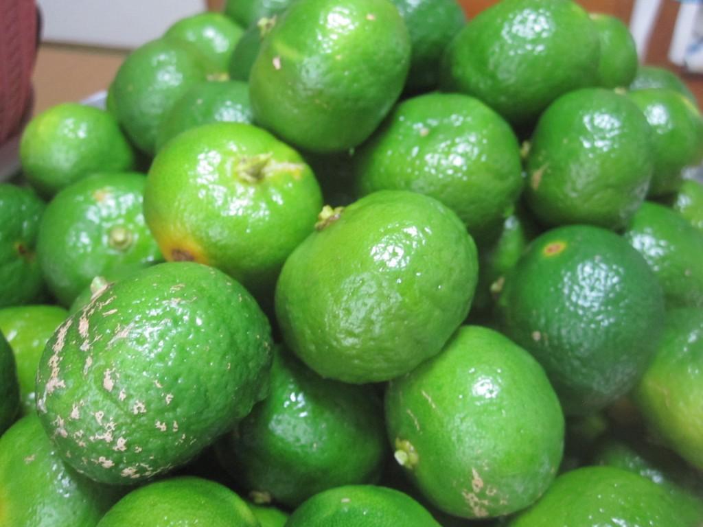 完全な無農薬で実ったフルーツ果物シークワーサー