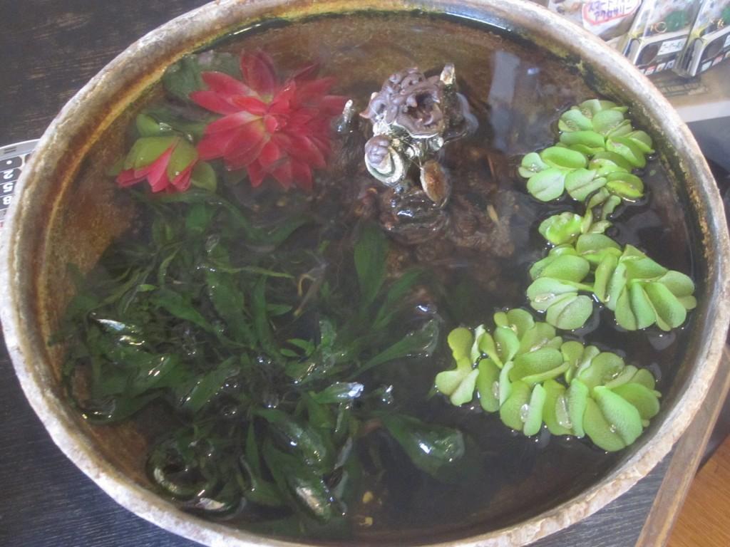 レジカウンター上の金魚鉢