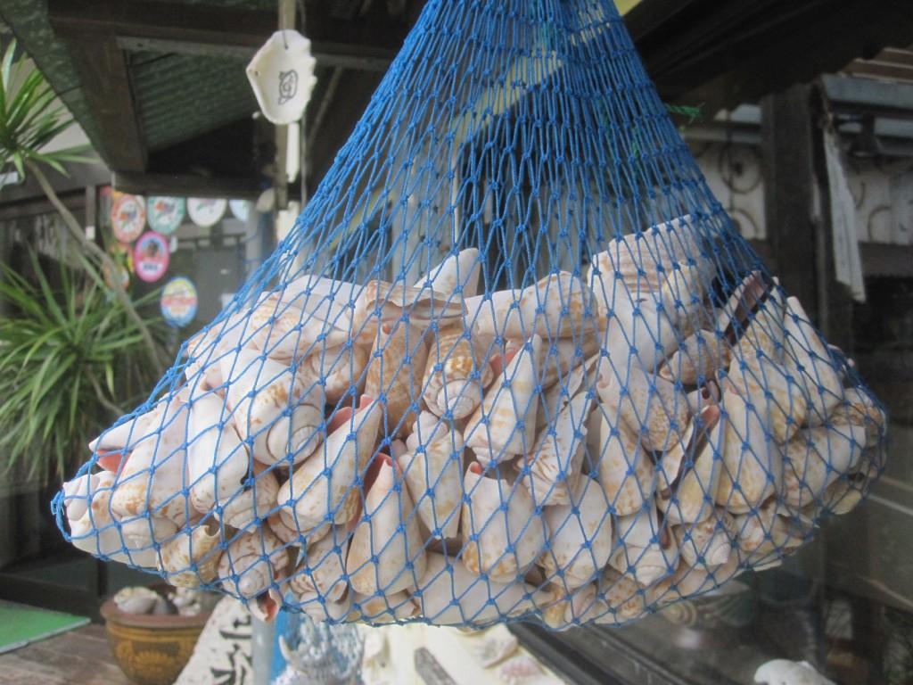 海に囲まれた沖縄を象徴する貝殻