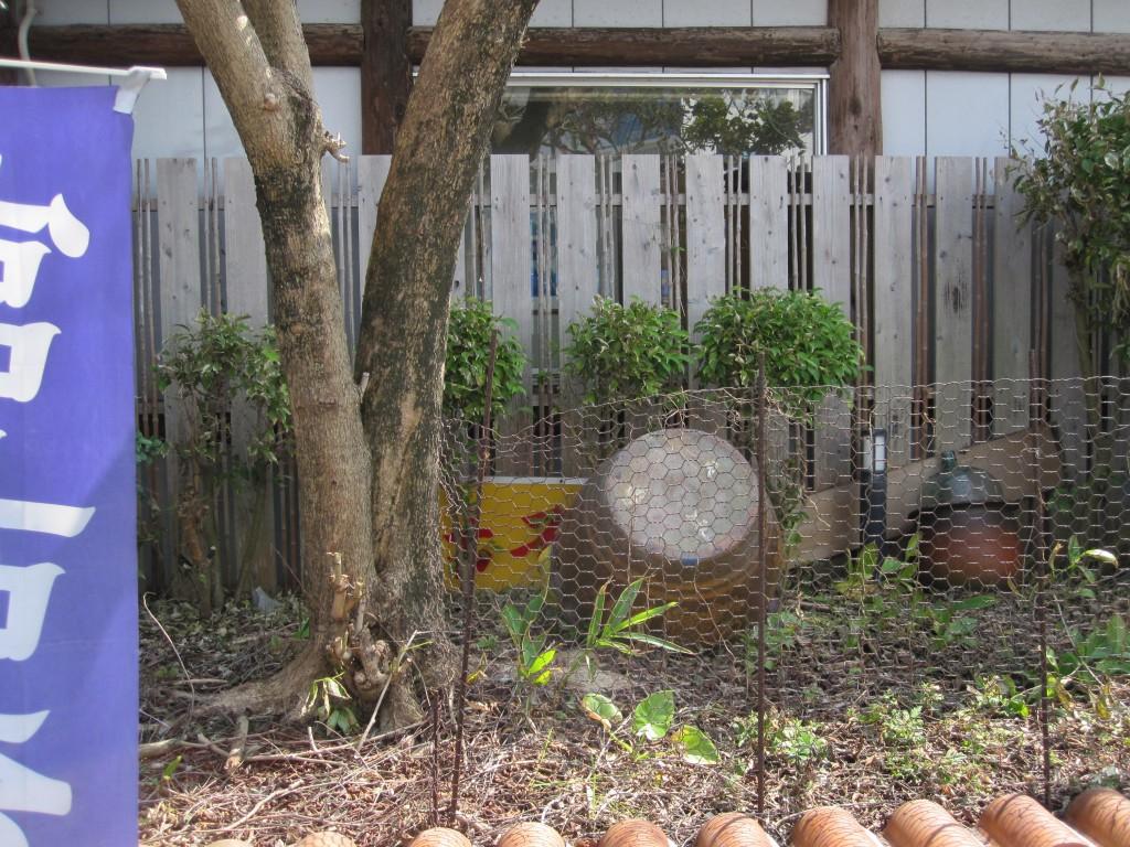 赤瓦が使われた花壇は冬らしく落ち葉で埋まっていた