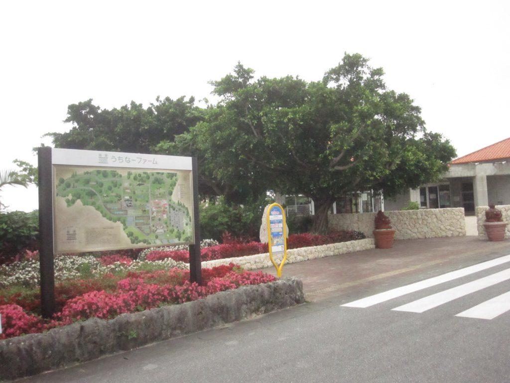沖縄県本島南部の糸満市摩文仁 うちなーファーム糸満観光農園