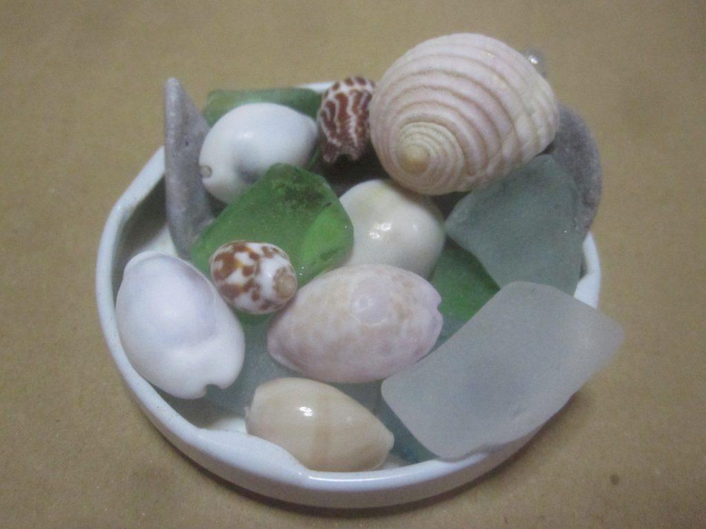 綺麗な珊瑚や貝殻、摩耗して角が取れたビーチグラス・シーグラスを飾る