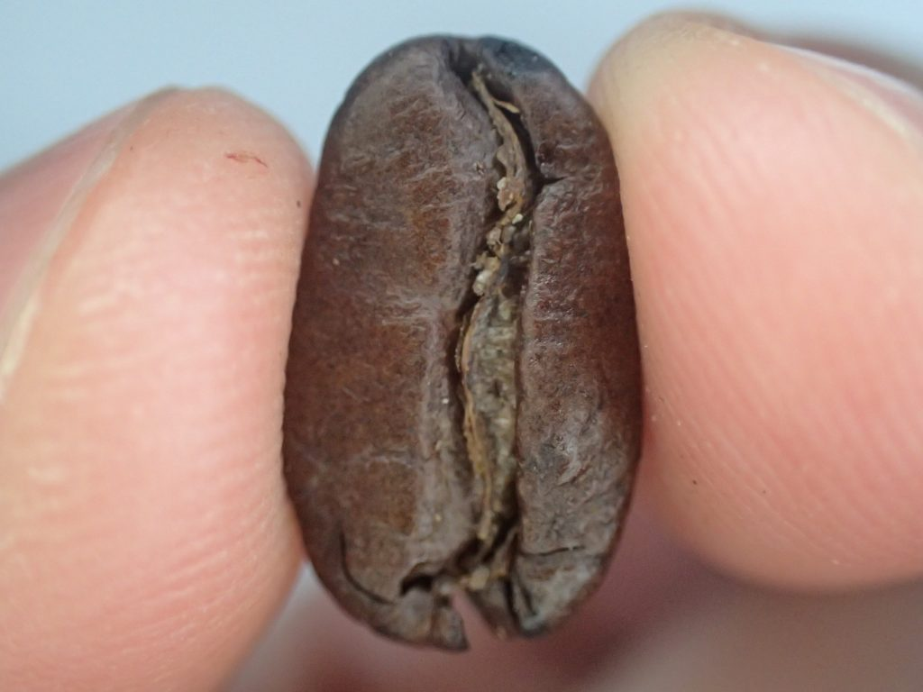DOUTOR(ドトール)グラノーラの食べる珈琲豆(COFFEE BEANS)