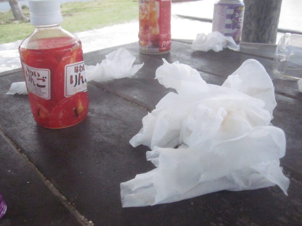 小さい子供連れのママさんたちが去った後に残されていたゴミ