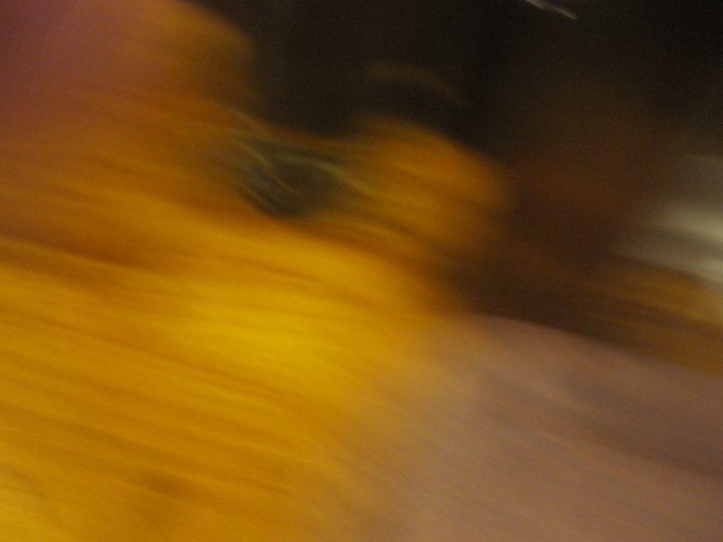 空腹が満たされ興奮してカメラのシャッターを押すもブレた(笑)