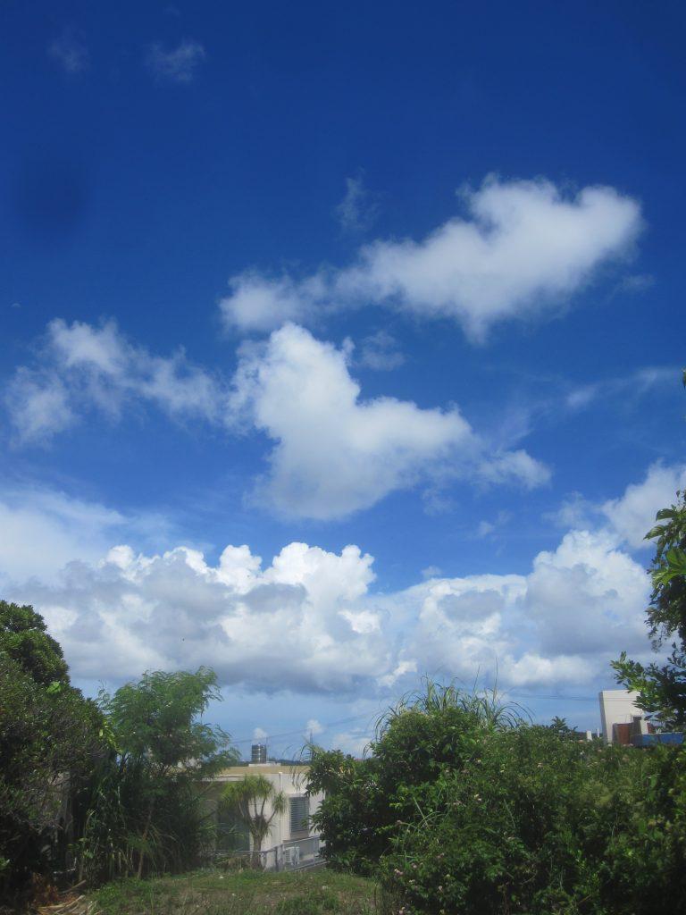 快晴の天気で空も突き抜けるような青さで気持ちいい!