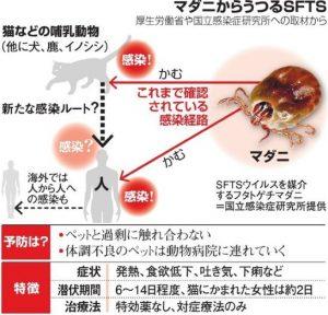 朝日新聞デジタル マダニからうつるSFTS