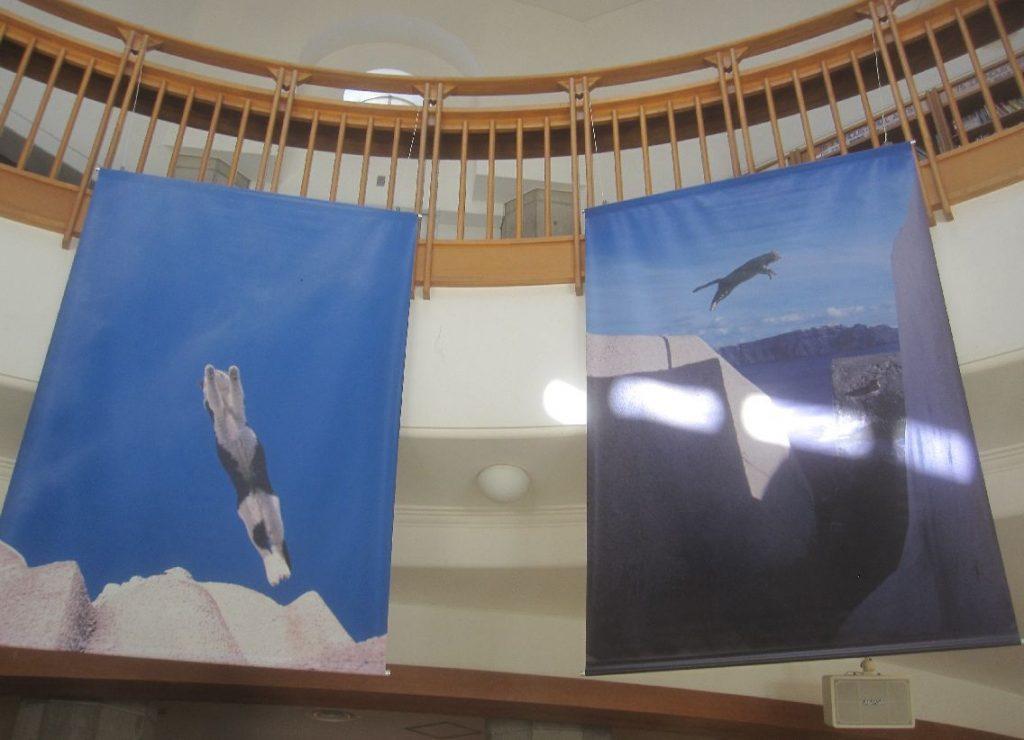 ネコ写真展のポスターが下げられたホールを撮影した写真