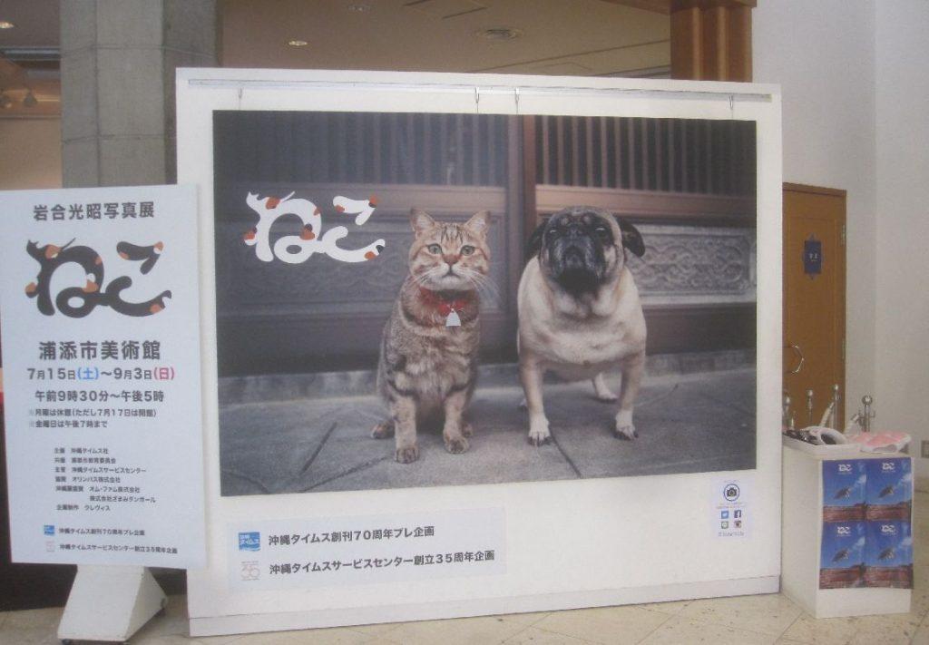 浦添美術館の受付ホールに設置された(ネコとバグが並んだ)巨大パネル