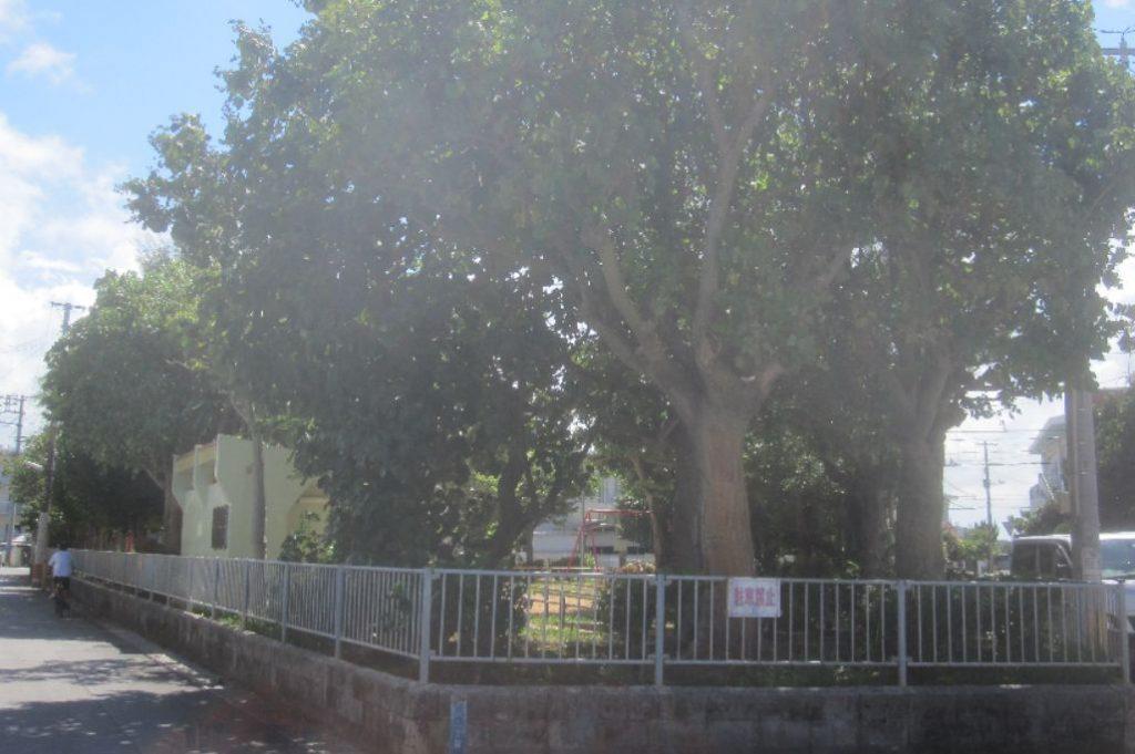 高校時代、三角公園と呼んでいたが実際の名前は「あさがお公園」