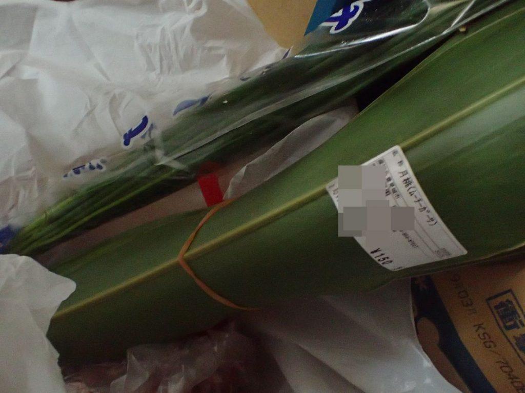 ムーチーを包む葉(月桃|げっとう)※沖縄方言でサンニンと呼ぶ