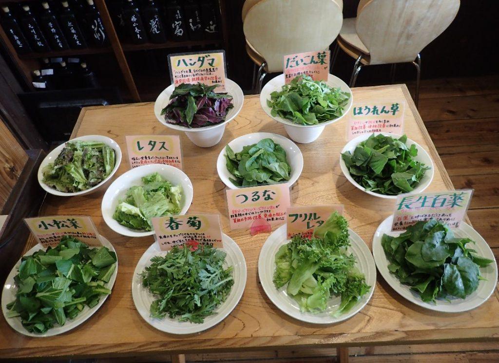 店主自らが仕入れた新鮮な沖縄島野菜
