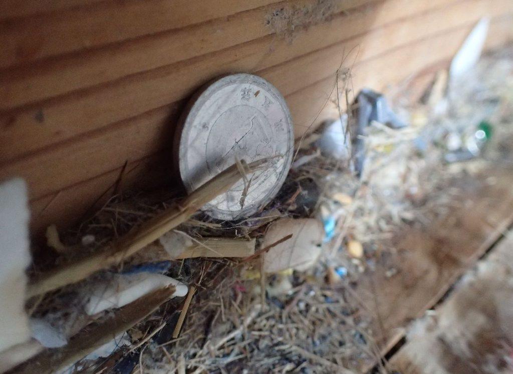 畳の下でゴミの山に埋もれていた1円玉を発見!