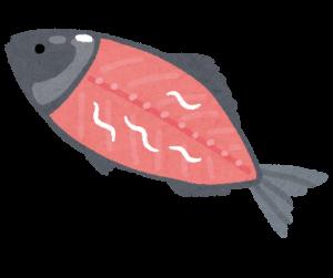 魚に寄生するアニサキス