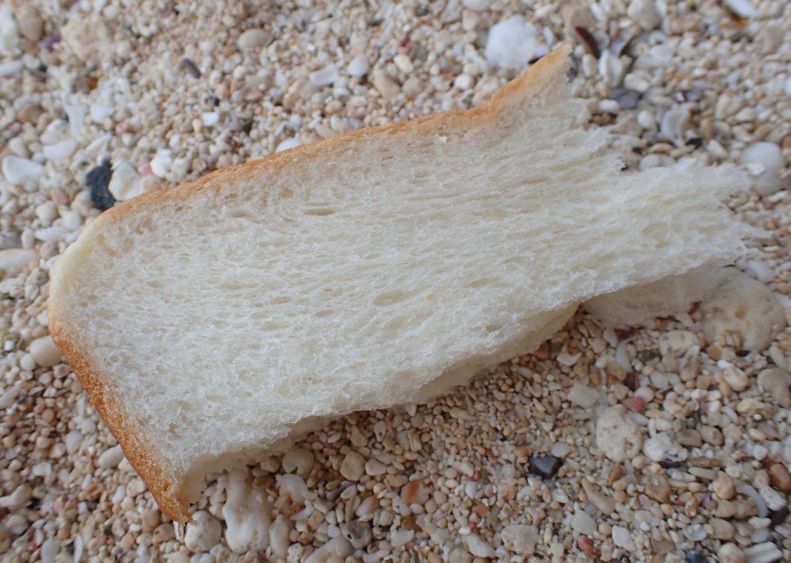 エサは練った小麦粉または食パンで十分