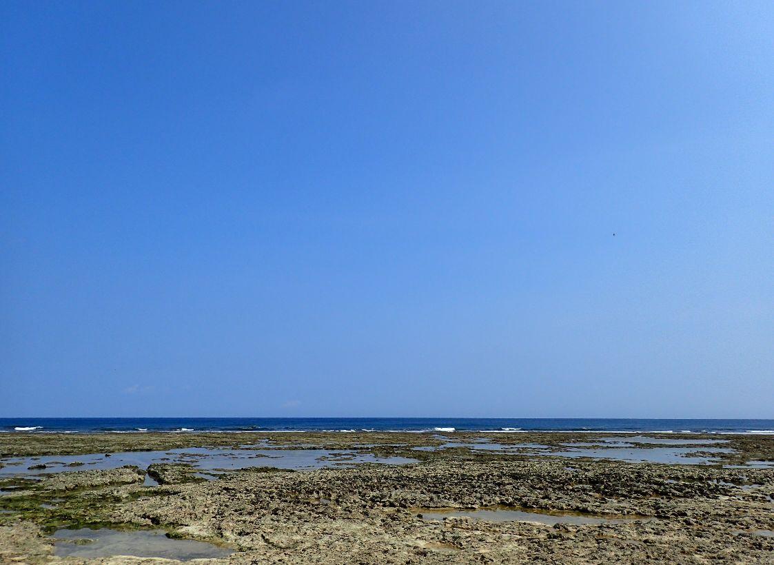 潮が引いて潮溜まりが現れる干潮に合わせて到着