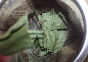 手でちぎったり、ハサミで切ってた葉を濾しアミに移す