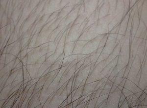 GBヘアトリマーで足の毛を切った
